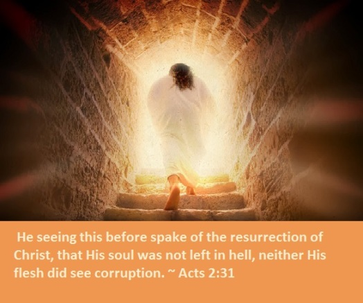 Resurrection 4